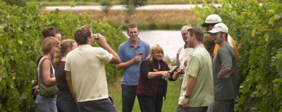 Enjoy the Wine Tour with Ace Luxury Wine Tours